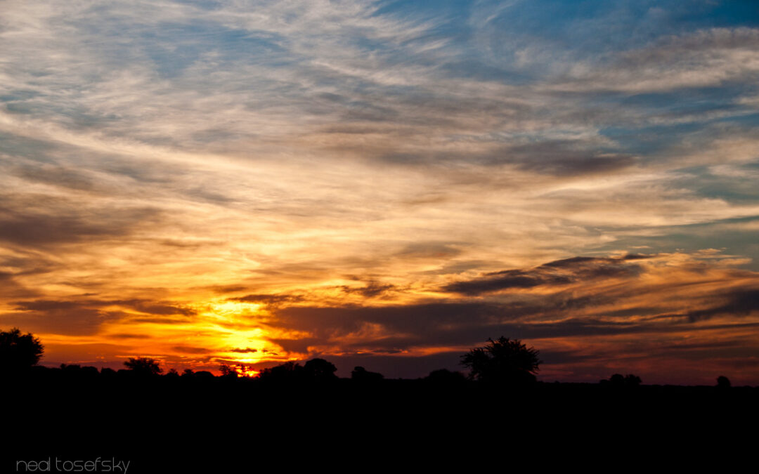 A Botswana Sunset