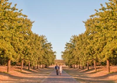weddings-10013